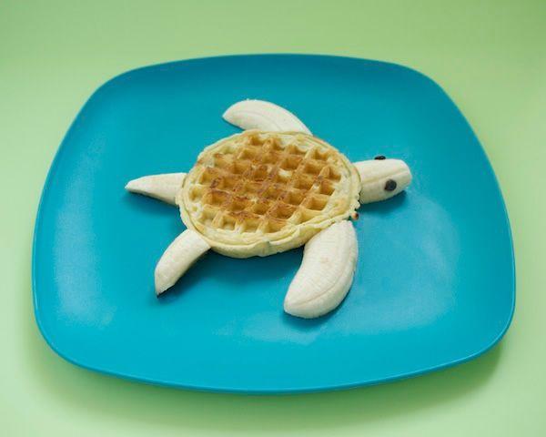 tortuga-comida