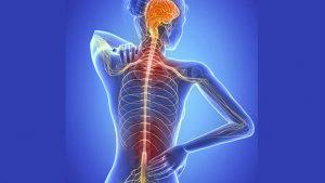 desaceleracion precedentes esclerosis multiple progresiva 1277582590 88454728 667x375