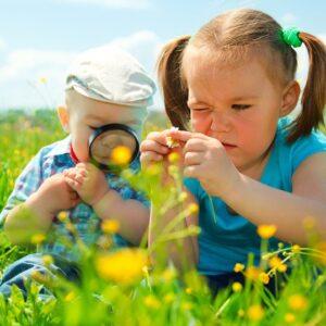 nenes naturaleza flores 830x539 1